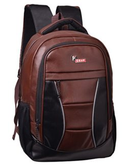 F Gear President Lite Brown 25 Liter Laptop Backpack SCH Bag