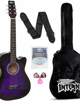 Intern INT-38C Acoustic Guitar Kit, With...